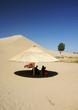Arbor in desert