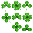 Set of different clovers