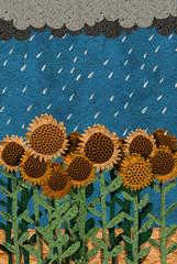 campo de girasoles bajo la lluvia