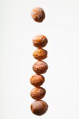 seed(ginkgo_nut)_039