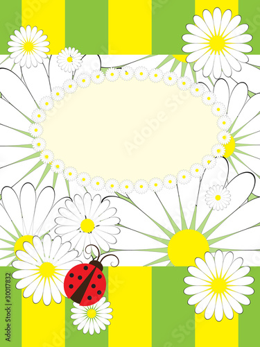 Tuinposter Lieveheersbeestjes Greeting card with summer motives pattern