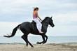cavaliere sur la plage