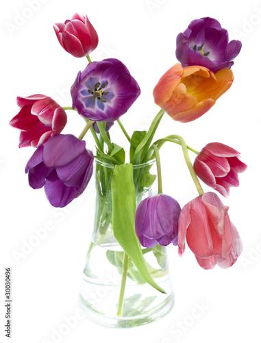 Plakat Spring beauty