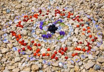 Landart Kreise Brombeeren Glas Blüten Beeren