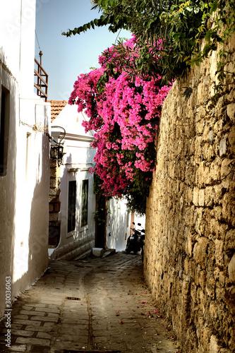 Medieval street © Veronika Galkina