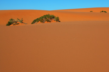 Orange sand and blue sky
