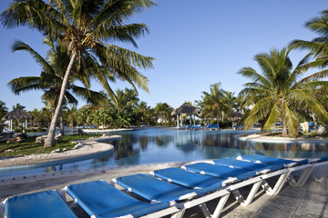 Luxury Resort Hotel Swimming Pool with Palm Trees Deck Chairs