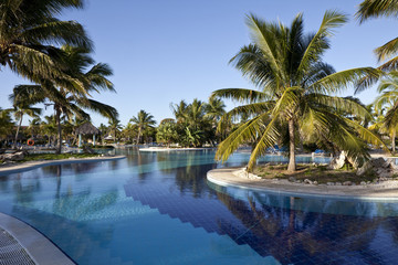 Luxury Resort Hotel Swimming Pool with Palm Trees