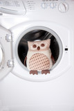 open washing machine with cuddly toy coming out or going in poster