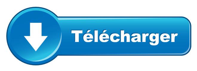 Bouton Web TELECHARGER (internet téléchargement télécharger)