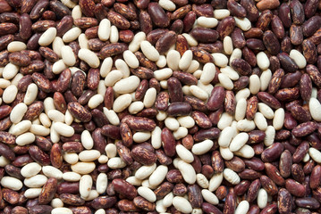 Bean background