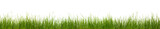 Extra large horizontal strip of grass, dirt, and roots isolated - 30093054