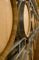 Wine cellar with barrique barrels
