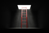 Exit the Dark - Red Ladder to the Light