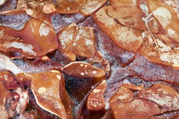 frozen raw chicken liver