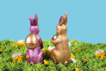 two rabbit and eggs
