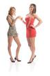Zwei sexy Party-Girls mit Sektgläsern