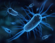 Leinwandbild Motiv Bakterien 3D