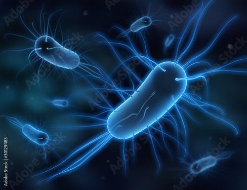 Bakterien 3D - 30129483