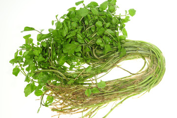 Vegetable, Watercress On White Background