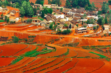 Village on red field