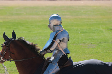 Mounted Knight