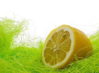 Lemon on fresh grass
