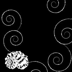 Background with shell and spirals in sketch style