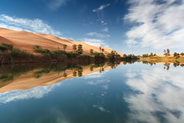 oasi desert
