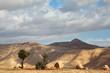 Transparent spring morning in Samaria
