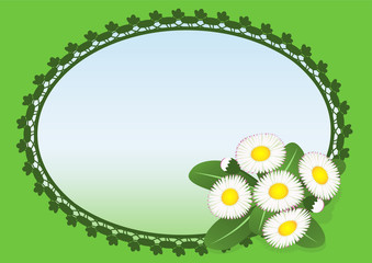 Lawn daisies greeting cards