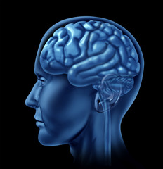 brain side view medical mental health