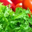 Grüner Salat mit Paprika und Tomaten