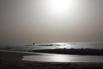 Grey sea shore