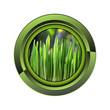 pousse jardin jardinage plante plantation printemps bouton