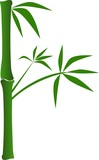Ilustrace z bambusu