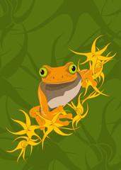 Frog No. 2