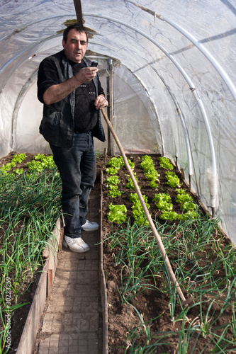 Working in real greenhouse