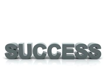 Schriftzug SUCCESS blaugrau
