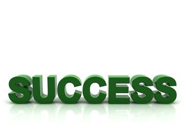 Schriftzug SUCCESS grün