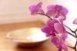 Rosa Orchidee und Klangschale