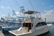 Charter Sportfishing Boats - 30255883