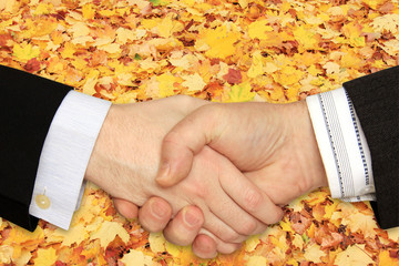 Businessmen shaking hands on the Leaves  Background