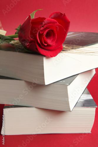 Poster libros