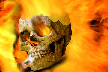 Halloween human skull against fire