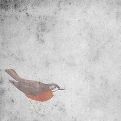 vintage wallparer background with bird
