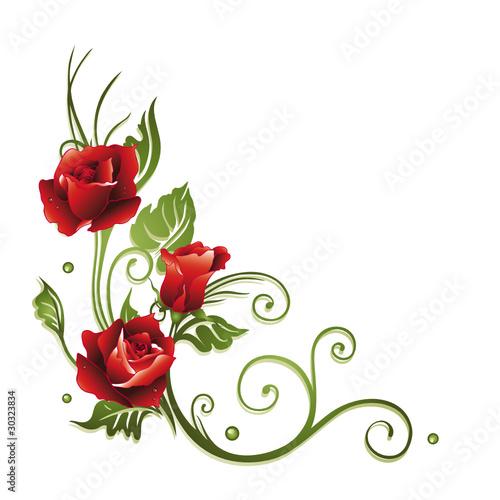 Vektor rose rosen ranke rot blumen blüten blätter