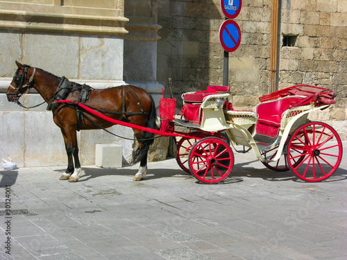 Cavallo con carrozza