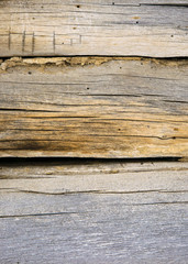 Distressed old wood plank boards background with nails
