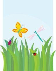 Green grass with  butterfly, dragon-fly, beetle and lady-bird